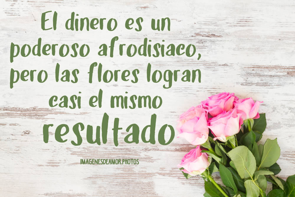 Imágenes De Frases Con Flores Bonitas Imagenes De Amor